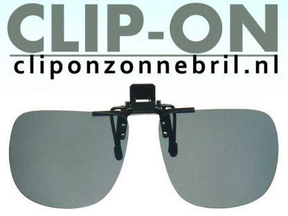 Sunny Grijs Clip-on