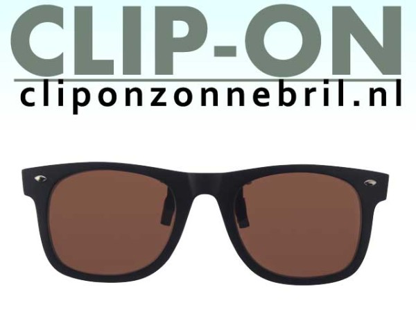 clip-on bruin wayfarer